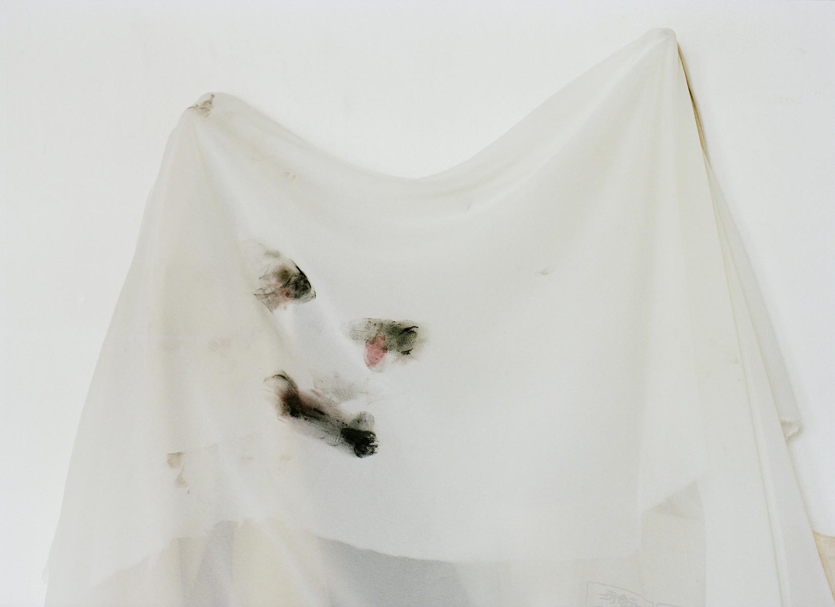 A Propos de Gisèle — © 2009 Estelle Hanania